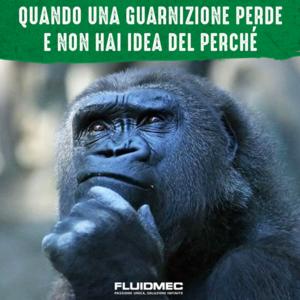 post facebook -Fluidmec - creatività Soluzione Group