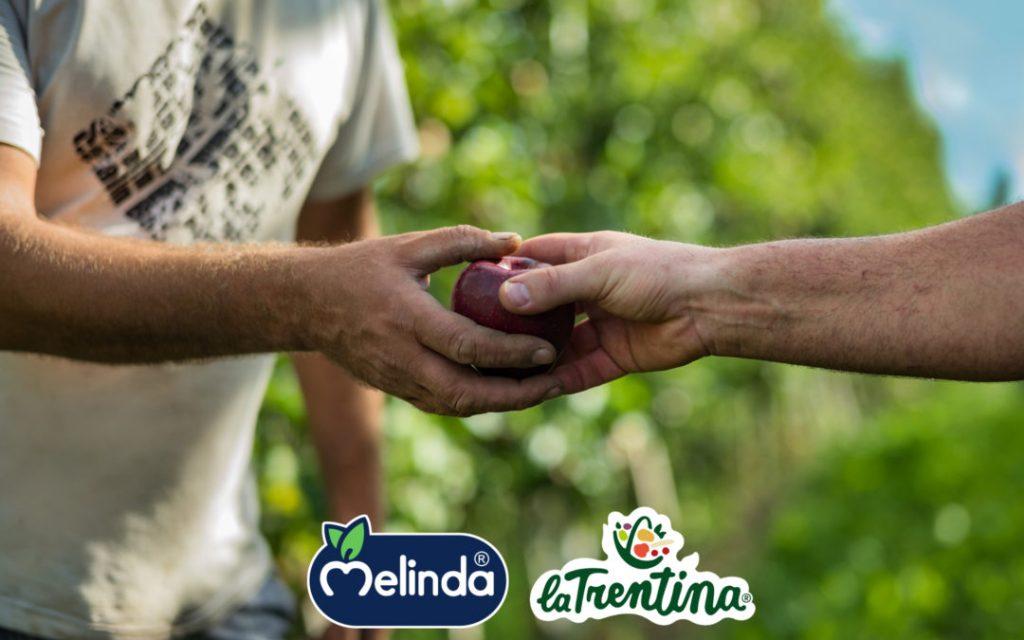Melinda La Trentina donazione